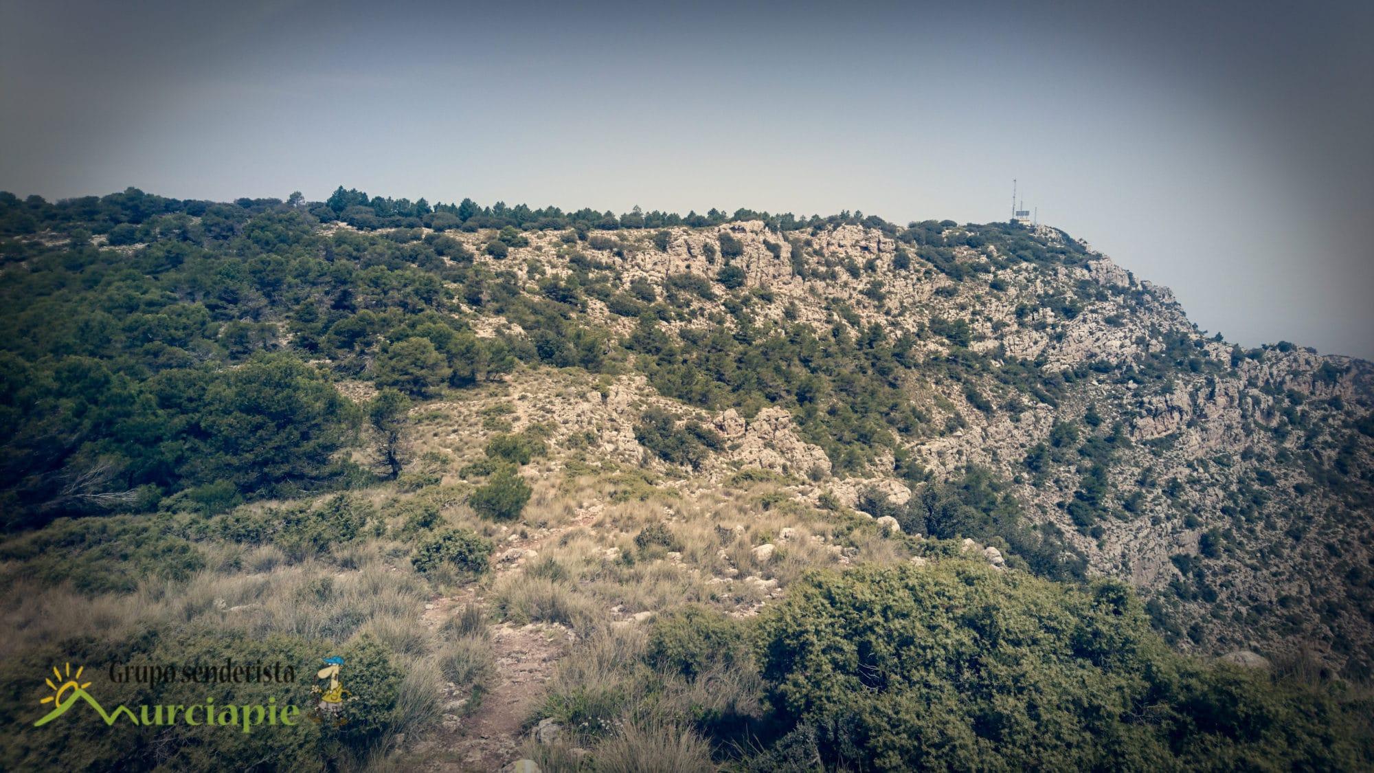 Cerro la Selva